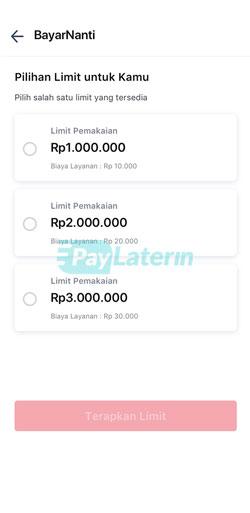 Pilih Limit Paylater
