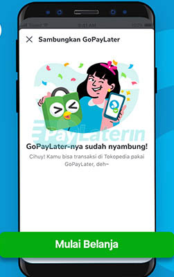 Tokopedia Pakai Gopaylater