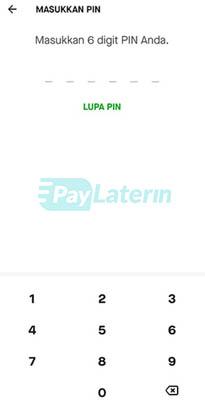 Pin Paylater