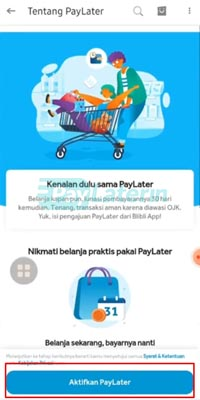 Review Paylater Blibli